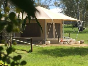 Boongarrie Luxury Tent - Northern Rivers Accommodation