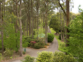Mount Lofty Botanic Garden - Northern Rivers Accommodation