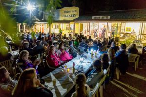 Miles Back to the Bush Festival - Northern Rivers Accommodation