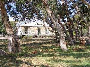 Wenton Farm Holiday Cottages - Northern Rivers Accommodation