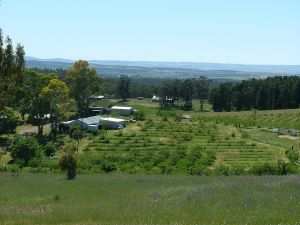Taralee Orchards - Northern Rivers Accommodation