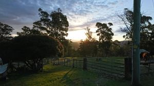 Glengarry farm stay BnB - Northern Rivers Accommodation